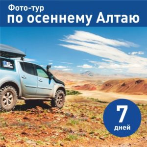 siberia discovery team